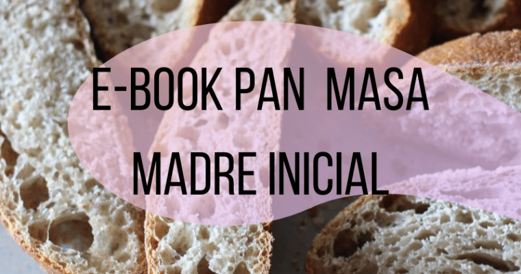 E-Book Pan de Masa Madre Inicial 11 usd